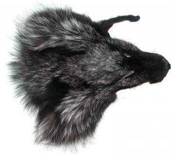 Fuchskopffell vom Silberfuchs, als Accessoires, für Deko, Basteln, ca. 17x19 cm, Schwarzsilberfuchs Kopffell