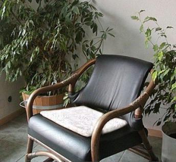 weiches lammfell sitzkissen wei waschbar fellkissen ca 40x40 cm kaufen bei simone orlowski. Black Bedroom Furniture Sets. Home Design Ideas