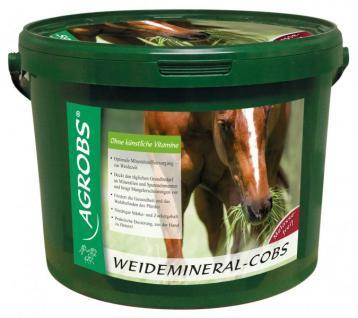 Agrobs Weidemineral-Cobs, 3 kg