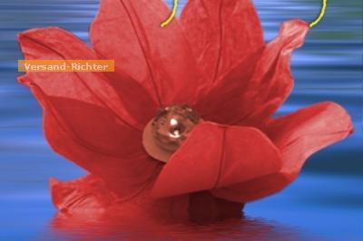 Wasserlaterne Lotusblume mit Teelicht Schwimmlaterne 1 Stück - Vorschau 4