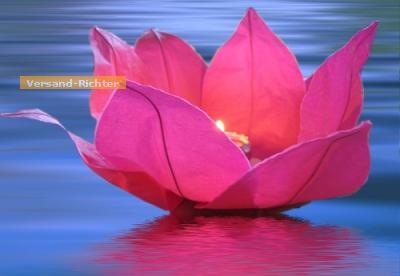 Wasserlaterne Lotusblume mit Teelicht Schwimmlaterne 1 Stück - Vorschau 5