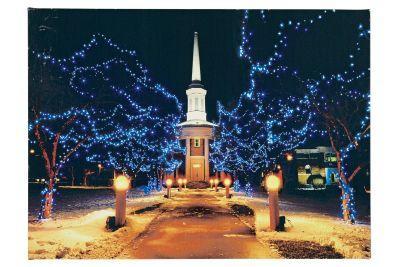 LED-Bild Fiberoptik Winterpark multicolor innen