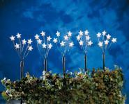 Sternenstäbe-Set 5tlg. 70cm klar/grün außen