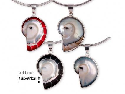 Nautilus-Muschel Kette-Anhänger echt Silber (Farbauswahl) pdsh039