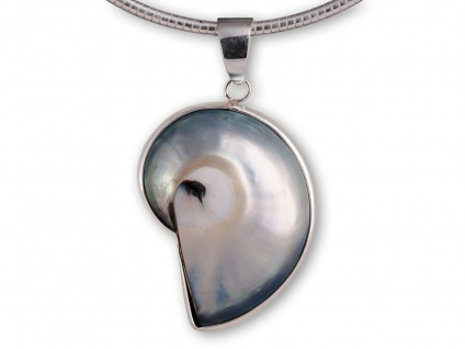 Perlmutt Nautilus-Muschel Ketten-Anhänger Silber pdsh039_perlmutt