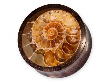 Holz Ohr Plug Ammonit Flesh Tunnel Piercing Schmuck Nautilus bis 50mm braun