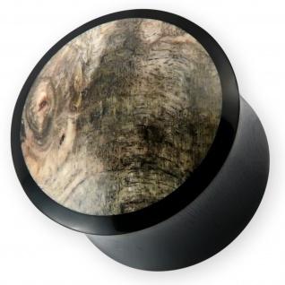 Horn Ohr Plug Buckeye Burl earlet piercing flesh tunnel wurzel holz wood organic