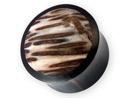 Flesh Plug Palm Holz Versteinert ohr piercing tunnel fossil wood tube stein horn