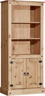 Thomer Bücherregal mit 2 Türen und 2 Regalböden