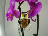 Orchideenstab Eule 1 - Orchid Stick Owl