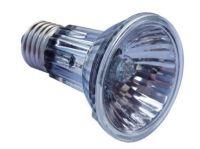 Reflektor-Halogen Lampe PAR20 50W 10°