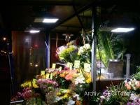 Marktstand Beleuchtung Solar mit 4x LED Flutlicht
