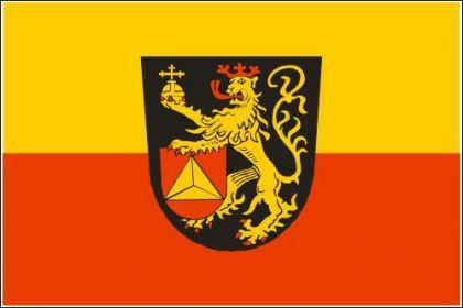 Flagge Fahne Frankenthal 90 x 150 cm - Vorschau