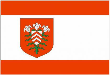 Flagge Fahne Halle Westfalen 90 x 150 cm