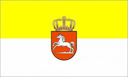 Flagge Fahne Hannover Königreich 90 x 150 cm - Vorschau