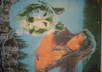 Flagge Fahne Indianerin Wolf 90 x 150 cm - Vorschau