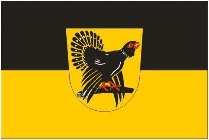 Flagge Fahne Landkreis Freudenstadt 90 x 150 cm - Vorschau