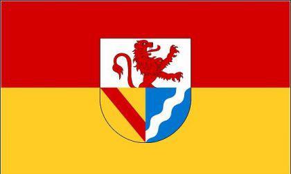 Flagge Fahne Landkreis Lörrach 90 x 150 cm - Vorschau