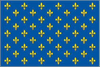 Flagge Fahne Lilienbanner blau 90 x 150 cm - Vorschau
