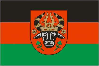 Flagge Fahne Parchim 90 x 150 cm - Vorschau