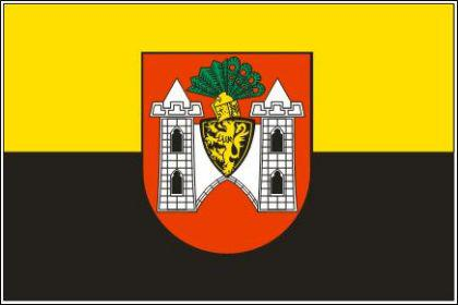 Flagge Fahne Plauen 90 x 150 cm - Vorschau
