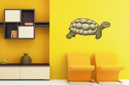 Wandtattoo Schildkröter Color