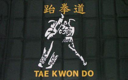 Flagge Fahne Tae kwon do 90 x 150 cm - Vorschau