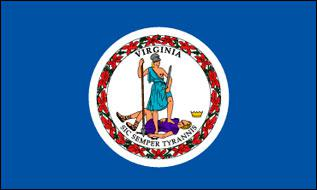 Flagge Fahne Virginia 90 x 150 cm - Vorschau