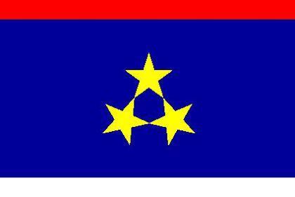 Flagge Fahne Vojvodina 90 x 150 cm - Vorschau