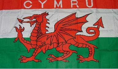 Flagge Fahne Wales CYMRU 90 x 150 cm - Vorschau