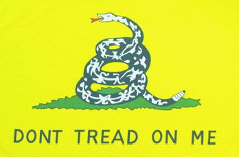 Flagge Fahne Don't tread on me 90 x 150 cm