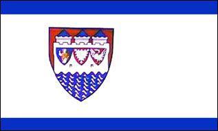 Flagge Fahne Steinburg 90 x 150 cm - Vorschau