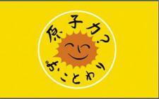 Flagge Fahne Atomkraft Nein Danke! japanisch