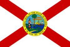 Flagge Fahne Florida 90 x 150 cm