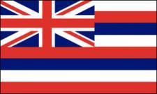 Flagge Fahne Hawaii 90 x 150 cm