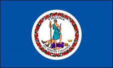 Flagge Fahne Virginia 90 x 150 cm