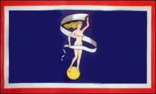 Flagge Fahne Glückstadt 90 x 150 cm