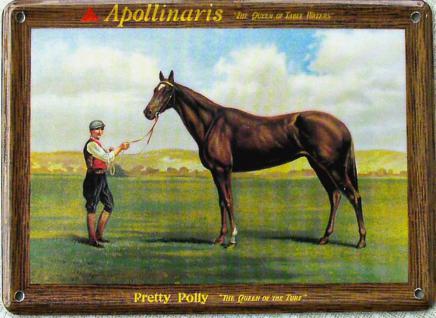 Apollinaris The Queen Of Table Waters Mini Blechschild