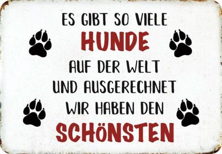 Kult-Hänger Schönster Hund