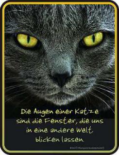 Funschild Die Augen einer Katze - Vorschau