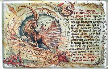 Sternzeichen Steinbock Blechschild - Vorschau