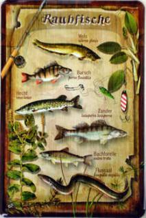 Raubfische Blechschild, 20 x 30 cm - Vorschau