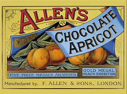 Magnet Allen's Apricot