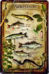 Raubfische Blechschild, 20 x 30 cm