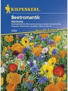 Beetromantik einjährige Mischung Mega-Pack - Vorschau 1