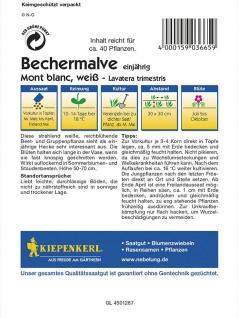 Lavatera Bechermalve Mont Blanc weiss - Vorschau 2