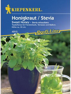 Stevia rebaudiana Süsskraut Honigkraut Sweet Honey 1