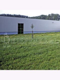 RSM-Rasensamen 7.1.2 Landschaftsrasen Standard mit Kräutern 10kg , Grundpreis: 10.78 € pro 1 kg