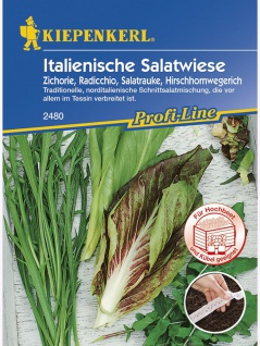 Salat Italienische Salatwiese Saatband 10mtr , Grundpreis: 0.40 € pro 1 m