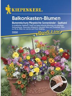 Blumenmischung Balkonkastenblumen pflegeleichte Sonnenkinder Mischung Saatband 5mtr , Grundpreis: 0.60 € pro 1 m